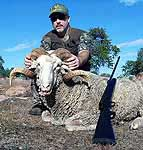 Hunting a Merino Ram with Big Boar Air Guns at The Wildlife Ranch