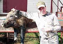 Hog Hunts at the wildlife ranch