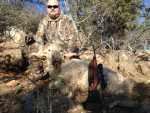 merino ram hunt rifle rocks