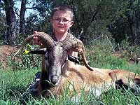 Hunting for a Corsican Ram in the Hills of Texas