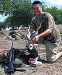 Trophy Blackbuck Antelope Hunting in the brushy small wooded areas of the rolling hills of texas
