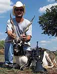 Trophy Blackbuck Antelope Hunting in mason county texas