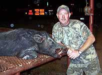 Hunting Hogs in South Texas with The Wildlife Ranch