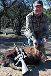 Hunting Trophy Boar hogs in the short mesquite brush at the wildlife ranch