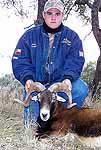 Hunting an Exotic Ram in te rolling hills of txas