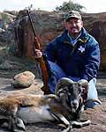 Extic Ram hunts in the rolling hills of Tx