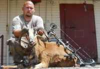 corsican ram taken with bow in mason, tx