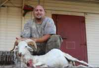 call for pricing texas dall ram in mason, tx