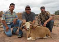 nice blonde texas dall ram rocks hill country