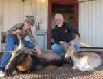 The Wildlife Ranch - catalina and fallow hunt