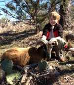 youth corsican ram hunting