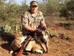 corsican ram hunt rifle hill country