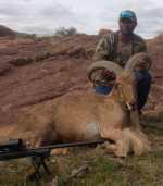 rifle aoudad mason texas