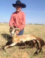 corsican youth hunt