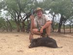 wild hog hunting air rifle