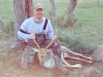 Fallow buck deer exotic hunt hunting hunts wildlife ranch mason tx yearround