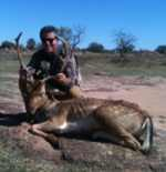 hill country fallow buck