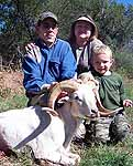 Hunting for a Trophy Texas Dall Sheep in the TX hill country